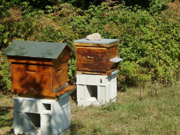 au rucher de la vauzelle